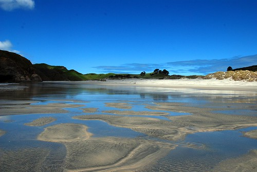 incredible whariki beach