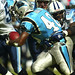 NFL Tennessee Titans Vs. Carolina Panthers Stephen Davis
