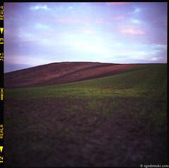 Fields (11.2008) (zgodzinski) Tags: sky 6x6 tlr film field mediumformat landscape dof bokeh poland krakow cracow f28 twinlensreflex silverfast krakoff rolleiflex28d carlzeissplanar80mmf28 autaut heidosmat fujicolorsuperiareala100 canoncanoscan8800f