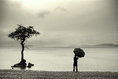 Rainy days (Nicolas Valentin) Tags: uk tree nature rain scotland scenery explore loch lochlomond abigfave nicolasvalentin bratanesque