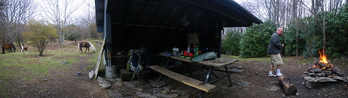 Wise Shelter w/ Ponies Panorama