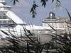 Des roseaux pour voyager sur les 7 mers - Seven Seas Voyager - Bordeaux - P6030080
