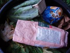 Compost bin: interior