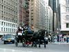 Hansom cab entering Central Park (Jim Lambert) Tags: nyc newyorkcity horses usa ny newyork us video spring unitedstates centralpark manhattan centralparksouth 2008 cps videos 6thavenue 6thave carriages sixthavenue sixthave centralparks w59thst horsedrawncarriages hansomcabs april2008 horsecarriages spring2008 west59thstreet centraldrive w59thstreet 10april2008 april102008 04102008 centraldr