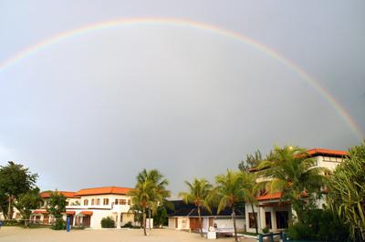 RainbowDSC05606
