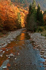 Autumn at Cheile Tisitei (Adrian Cherciu) Tags: autumn trees red sky cloud mountain tree green leaves forest river landscape nationalpark colours stones wildlife romania cascade carpathians putna vrancea cheiletisitei fallcheiletisitei