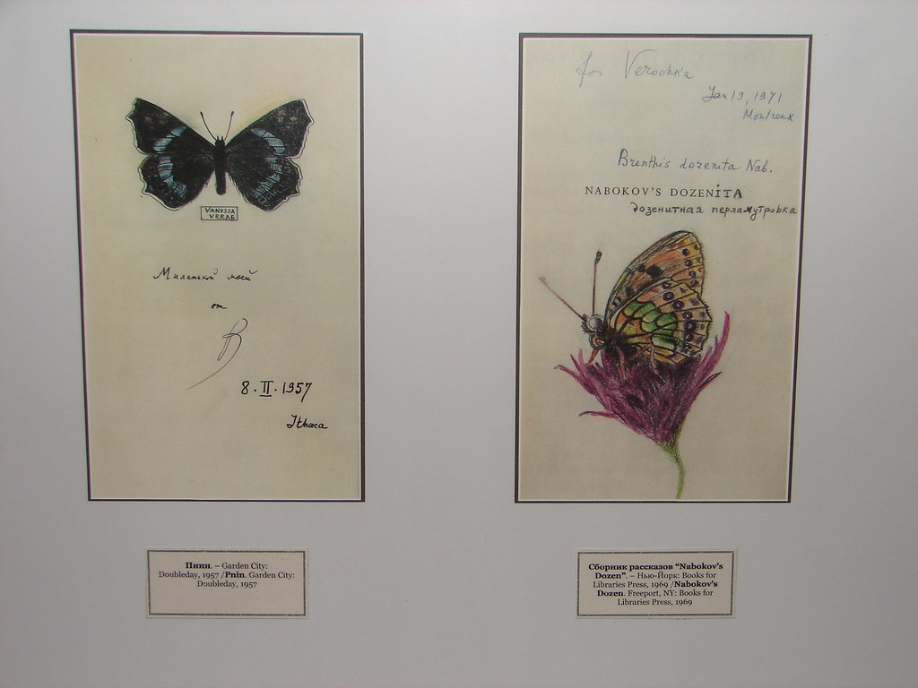 Illustrated Original Cover Pages for Pnin and Nabokov's Dozen