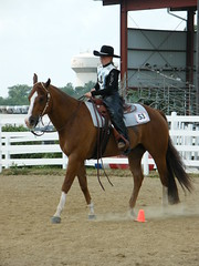 Follow the Pattern (Fresh Lens Photography) Tags: horses speed photo action barrels july competition exhibition ribbon ponies poles horseshow athlete 2008 rider horsemanship kanecountyfair talekinker tanyamiller freshlensphotography