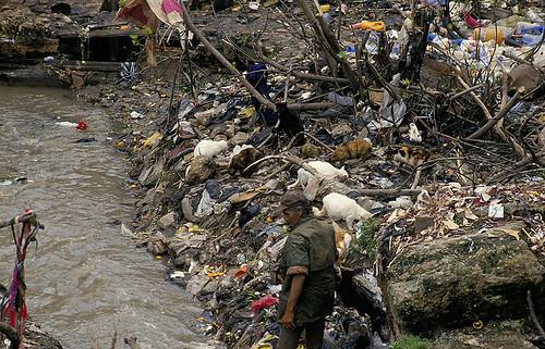 MA098S04 World Bank