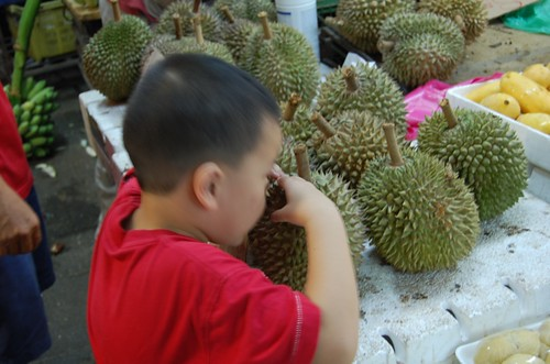 smelling durian