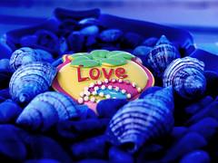 .. LoVe .. (Ra3ni) Tags: blue macro love romance alemdagqualityonlyclub alemdaggoldenaward