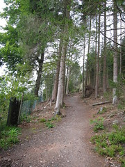 Beginning of my hike (ybboey) Tags: blackforest titisee