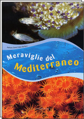 "Libri ""Barbieri Speleologia/Biologia"" 2865392422_bc01da1106_m"