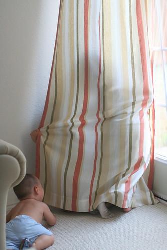咦?这个窗帘后面有什么?