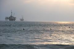 we in the sea (alexandertwo) Tags: ocean california sea sun west beach coast la surf waves pacific offshore wave surfing gas longbeach rig surfboard oil surfers westcoast oilrig drill rigs surfs drilling drills offshoredrilling drillingrigs