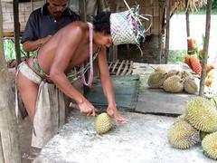Orang Asli bei der Zubereitung einer Durian