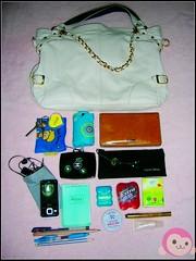 singinger' s bag