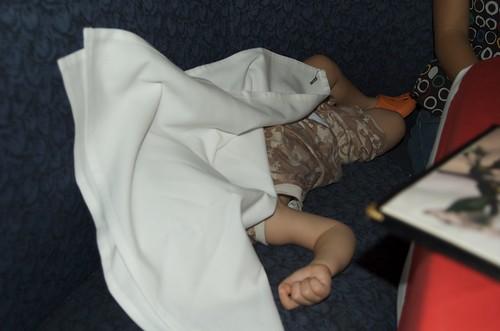 Sleeping Benji