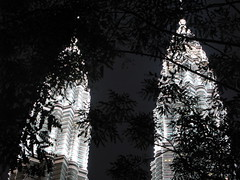 Petronas Thru Trees (The Digital Scrapbook) Tags: night malaysia kl petronastowers lptowers