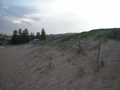 Front of dune (cobalt.penguin) Tags: beach dunes sydney peninsula avalon barranjoey