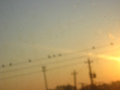 imperfect (harthillsouth) Tags: morning sun sunlight birds dawn blurry wire wires carwindow dirtywindow imperfect imperfections