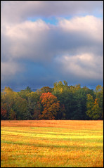 (Cliff Michaels) Tags: sky weather photoshop d50 nationalpark nikon october tennessee cadescove greatsmokymountainsnationalpark capturenx tennpenny