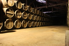 Chas Hennessy (Pixnow-FRW) Tags: cognac chais hennessy barriques