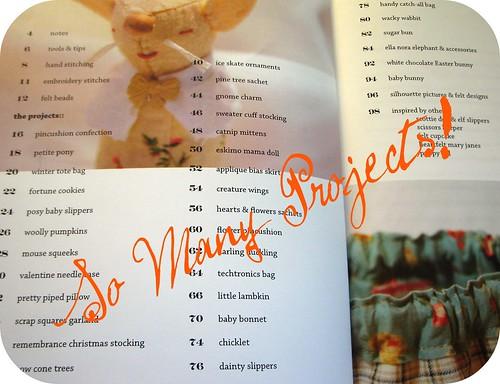 Blanket Statement Book by Vicki of Turkeyfeathers
