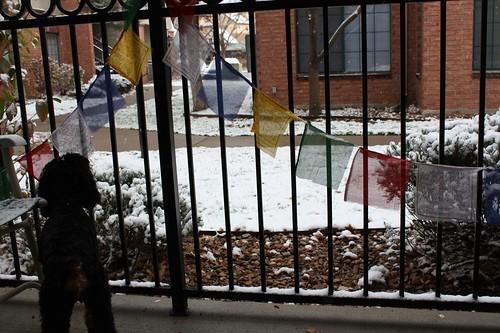 first snowfall in denver
