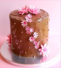 Pink n Brown (~Trs Chic Cupcakes by ShamsD~) Tags: pink flowers beautiful cake southafrica nikon candy chocolate pietermaritzburg goreous shamsd proudlysouthafrica shamimadesai madeinsouthafrica cakesfromsouthafrica cakesinpietermaritzburg