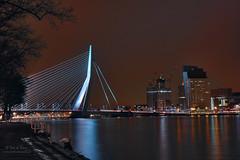 Rotterdam Erasmus bridge (Peet de Rouw) Tags: bridge night port river rotterdam nacht erasmusbrug zwaan peet nachtfoto denachtdienst peetderouw peetderouwfotografie gettyimagesbeneluxq1