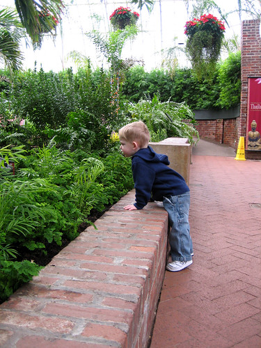 erik at phipps conservatory