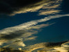 BM252 Iridescent Cloud (listentoreason) Tags: sky clouds scenic favorites olympus sunsetsunrise opticaleffect cloudiridescence iridescentcloud score30 olympusc4040z c4040z