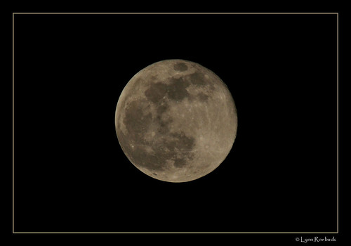 Biggest Full Moon of 2008! by Lynn  Roebuck.