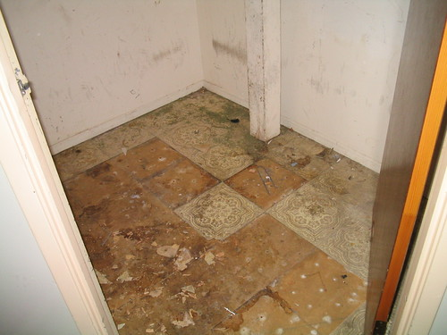 Damaged Vinyl Floor