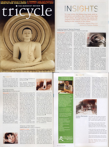 The Buddhist Review Magazine, February 2009
