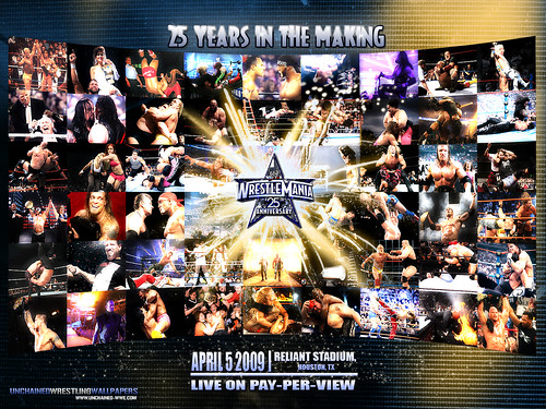 wwe rock wallpaper. WWE WrestleMania 25 Wallpaper