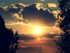 sunset (vale ) Tags: sunset orange tree colors yellow alberi clouds tramonto nuvole sony vale giallo tramonti colori castello f828 arancio lecco valentina tranquillit serenit adoroitramonti littlecrazybutterfly
