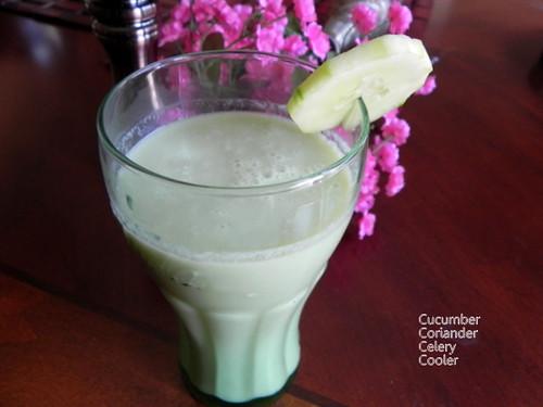 cucumber coriander celery cooler  sensible veg