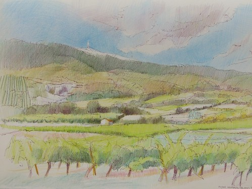 Mont Ventoux and the vines by makingamark2