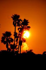 sunrise2sm