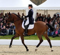 Isabell Werth and Satchmo (neulands) Tags: horse cheval pferde hagen satchmo isabellwerth horsesanddreams