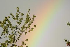 L'arc en ciel (jack-line17) Tags: nature couleur arcenciel