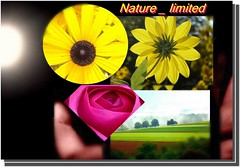 nature_limited collage