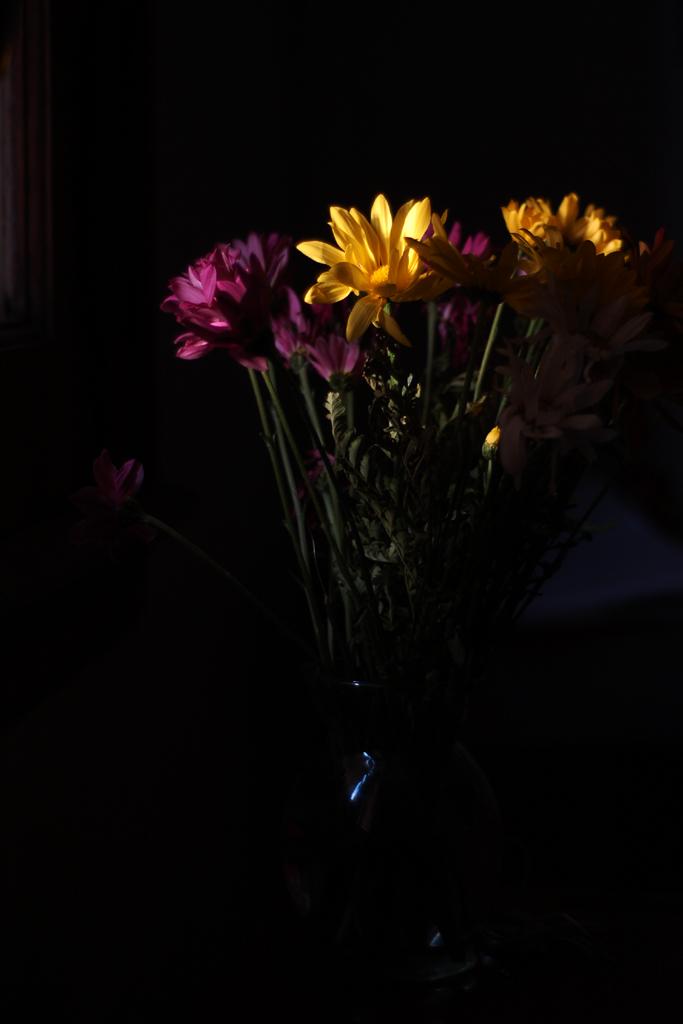 flores ventana 02