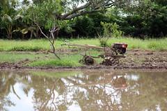 Hand Tractor (JP Dela Paz) Tags: farm handtractor