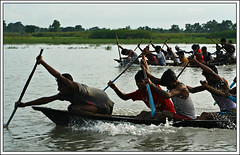 Go! Go!! Go!!! [..Savar, Bangladesh..] (Catch the dream) Tags: people game water rain rural boats boat fight asia village native action ripple traditional bongo competition row event monsoon winner rowing oar destination recreation win tradition gush bengal bangla winning perseverance oars bengali thrust boatrowing bangladeshi bangali oaring traditionalgame saarc aplusphoto gettyimagesbangladeshq2