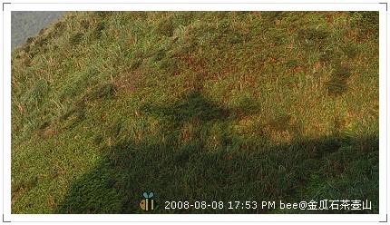 2008.08.08金瓜石茶壺山爬山 (8)