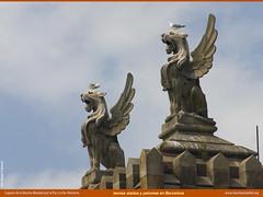 leones alados y palomas.jpg (Rafael Edwards) Tags: barcelona españa spain pigeons gaudi palomas espagne leones wingedlion marchamundial colombas leonalado rafaeledwards lionaile