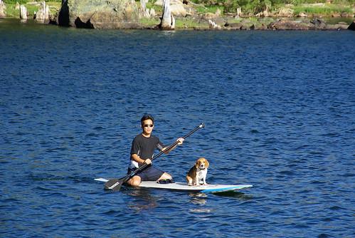 Lake basing Camping-6